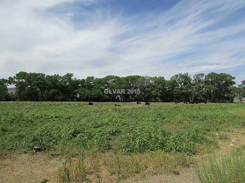 Photo of home for sale at Buckhorn Ranch Road, Alamo NV